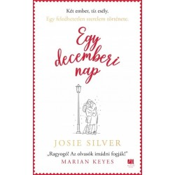 Josie Silver: Egy decemberi nap