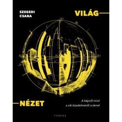 Szegedi Csaba: Világ-nézet - A képről mint a sík küzdelméről a térrel