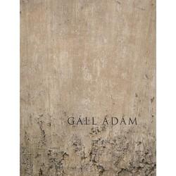 Gáll Ádám: Eltűnésmintázatok
