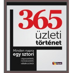 Kocsi Ilona: 365 üzleti történet - Minden napra egy sztori cégvezetőktől, menedzserektől,vállalkozóktól