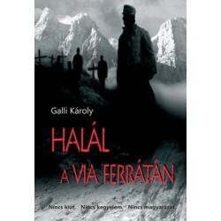 Galli Károly: Halál a via ferrátán