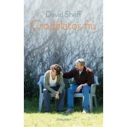 David Sheff: Csodálatos fiú