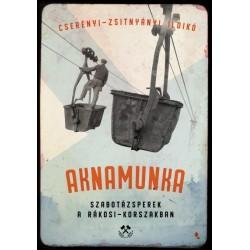 Cserényi-Zsitnyányi Ildikó: Aknamunka - Szabotázsperek a Rákosi- korszakban
