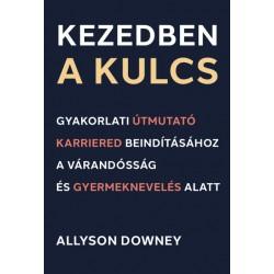 Allyson Downey: Kezedben a kulcs - Gyakorlati útmutató karriered beindításához a várandósság és gyermeknevelés alatt