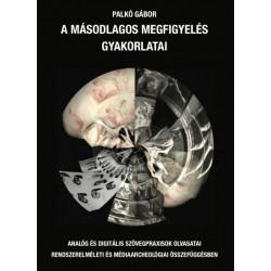 Palkó Gábor: A másodlagos megfigyelés gyakorlatai - Analóg és digitális szövegpraxisok olvasatai rendszerelméleti és médiaarc...