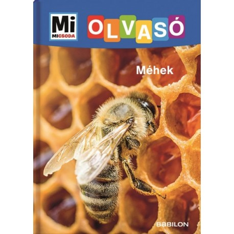 Christina Braun: Méhek - Mi Micsoda Olvasó