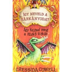 Cressida Cowell: Így neveld a sárkányodat 5. - Így fejtsd meg a tűzkő titkát