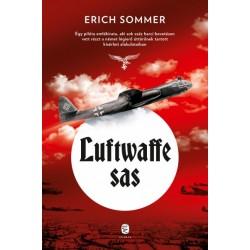 Erich Sommer: Luftwaffe sas