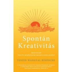 Tenzin Wangyal Rinpocse: Spontán kreativitás - Meditációk pozitív minőségeinek megnyilvánulásáért