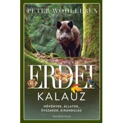 Peter Wohlleben: Erdei kalauz - Növények, állatok, évszakok, kirándulás