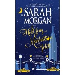 Sarah Morgan: Holdfény Manhattan felett