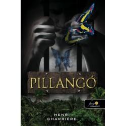 Henri Charriére: Pillangó - Szökésem a pokolból