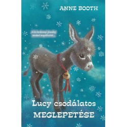 Anne Booth: Lucy csodálatos meglepetése