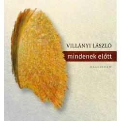 Villányi László: mindenek előtt