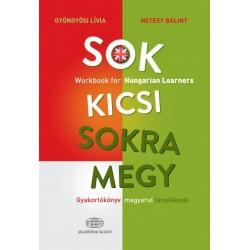 Gyöngyösi Lívia - Hetesy Bálint: Sok kicsi sokra megy (angol) - Gyakorlókönyv magyarul tanulóknak - Workbook for Hungarian Le...