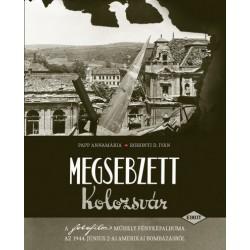 Papp Annamária - Rohonyi D. Iván: Megsebzett Kolozsvár - A fotofilm műhely fényképalbuma az 1944. június 2-ai amerikai bombáz...