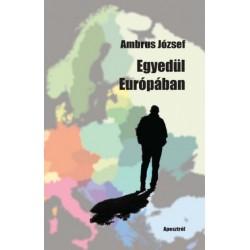Ambrus József: Egyedül Európában