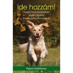 Pippa Mattinson: Ide hozzám! - A stabil behívás kialakítása lépésről lépésre kölyök- és felnőtt kutyáknál