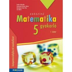 Dudás Gabriella - Hetényiné Kulcsár Mária - Machánné Tatár Rita - Sós Mária: Sokszínű matematika gyakorló 5. - 1. kötet - (MS...