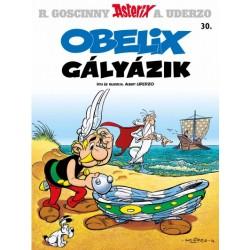 Albert Uderzo: Asterix 30. - Obelix gályázik