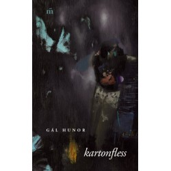 Gál Hunor: kartonfless