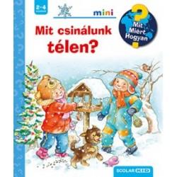 Andrea Erne: Mit csinálunk télen? - Mit? Miért? Hogyan? Mini