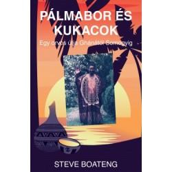 Steve Boateng: Pálmabor és kukacok - Egy orvos útja Ghánától Somogyig