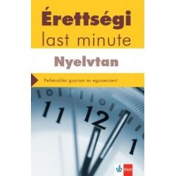 Diószegi Endre: Érettségi - Last minute - Nyelvtan