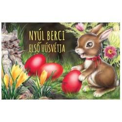 Izmindi Katalin: Nyúl Berci első húsvétja