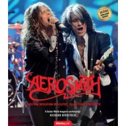 Richard Bienstock: Aerosmith - A bostoni rosszfiúk részletes, illusztrált története