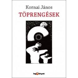 Kornai János: Töprengések