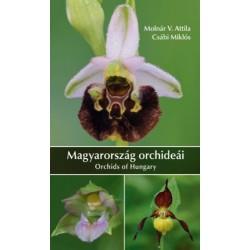 Molnár V. Attila, Csábi Miklós: Magyarország orchideái