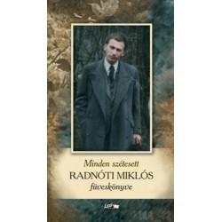 Radnóti Miklós: Minden szétesett - Radnóti Miklós füveskönyve