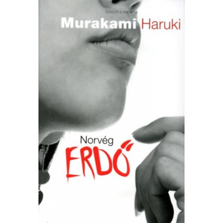 Murakami Haruki: Norvég erdő