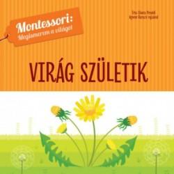 Magali Le Huche: Virág születik - Montessori: Megismerem a világot