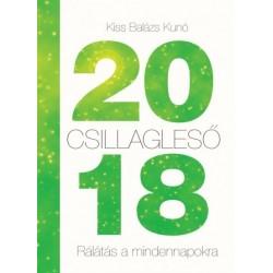 Kiss Balázs Kunó: Csillagleső 2018 - Rálátás a mindennapokra