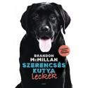 Brandon McMillan: Szerencsés kutya leckék
