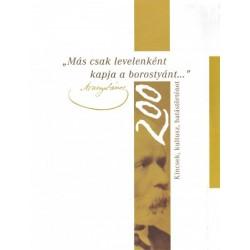 Rózsafalvi Zsuzsanna: Más csak levelenként kapja a borostyánt... - Kincsek, kultusz, hatástörténet - Arany 200