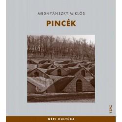 Mednyánszky Miklós: Pincék