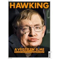 Hawking - A végtelen elme