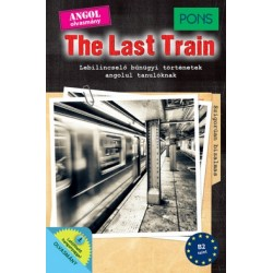Emily Slocum: PONS The Last Train