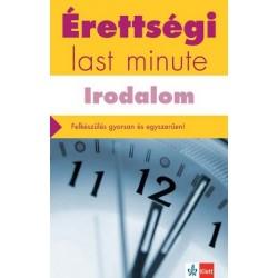 Diószegi Endre: Érettségi - Last minute - Irodalom