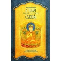 Tenzin Wangyal Rinpocse: A tudat természetének csodái - A dzogcsen esszenciája Tibet ősi bön hagyományában