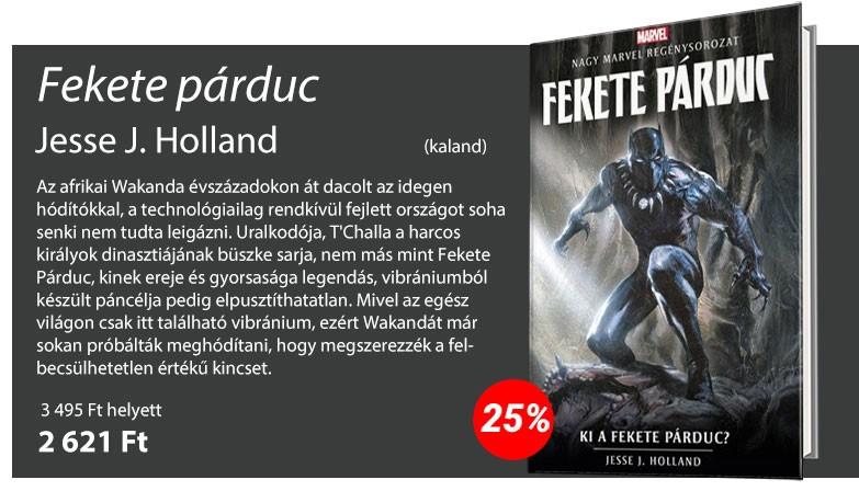 Jesse J. Holland: Marvel - Fekete Párduc - Ki a Fekete Párduc?